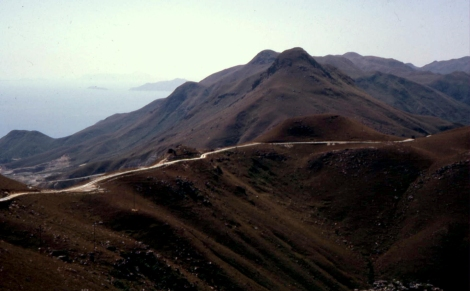 Lan Tau grassland 67